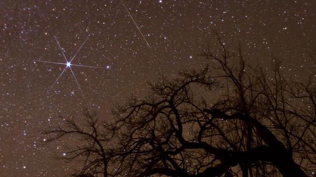 Year's Best Meteor Shower Tonight