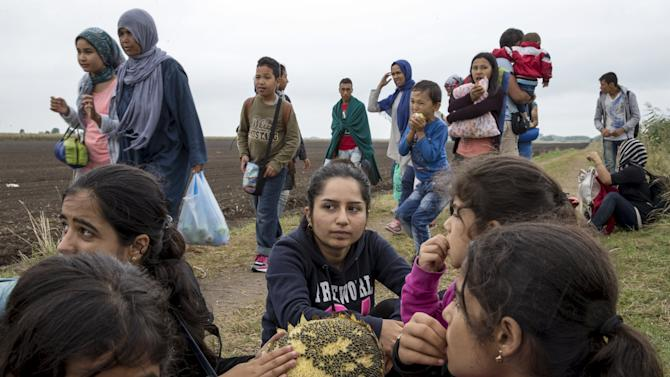 A group of migrants who said they were from Kobani eat sunflower seeds after crossing into Hungary from the border with Serbia near the village of Roszke