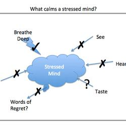 Beyond EQ: Why Do We Fail to Take a Deep Breath in a Tough Situation?
