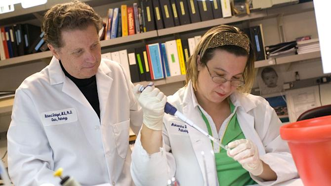 "This 2008 picture provided by Georgetown University shows Richard Schlegel, M.D., Ph.D., left, and research associate Aleksandra Dakic, Ph.D., in his laboratory at Georgetown University Medical Center in Washington. A discovery allows doctors to grow ""mini tumors"" from each patient's cancer in a lab dish, then test various drugs or combinations on them to see which works best. Although the approach needs much more testing, researchers think it could offer a cheap, simple way to personalize treatment without having to analyze each patient's genes. ""We see a lot of potential for it,"" said Schlegel, one of the study leaders. ""Almost everyone could do it easily."" (AP Photo/Georgetown University)"
