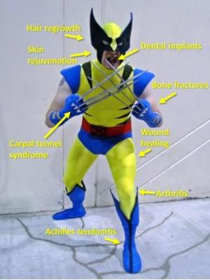 Fighting Tooth and Claw with Wolverine Examining the Healing Power of an X-Man