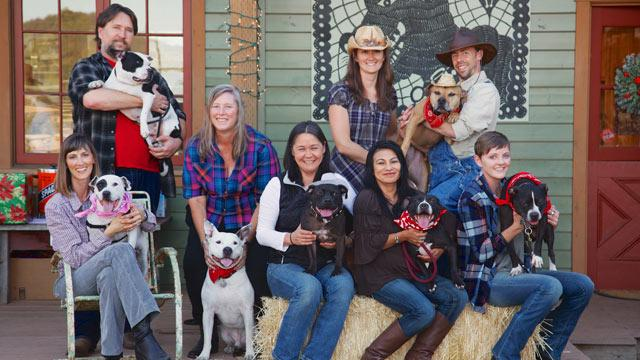 Rescued Michael Vick Dogs Reunited