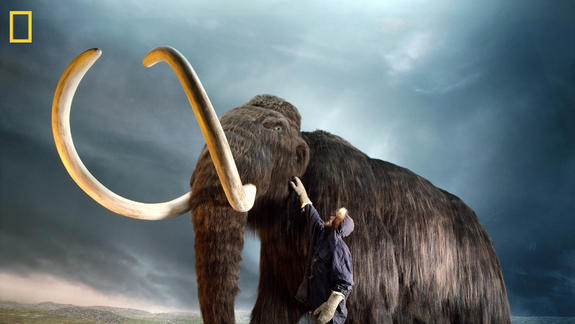 Mighty Mammoths Fell Prey to Rapidly Warming Earth