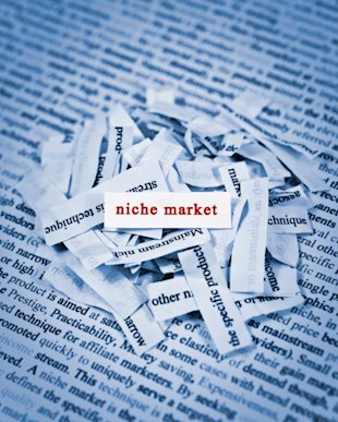 Why It's Important to Define Your Niche image why its important to define your niche