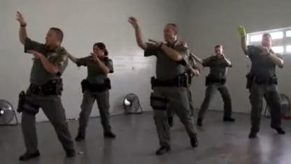 Deputies Surprise 7-Year-Old Boy Suffering from Terminal Illness with 'Thriller' Dance