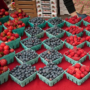Oregon Berry Festival
