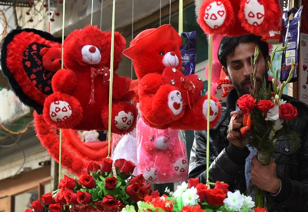'Avoid' Valentine's Day Pakistan president tells youth