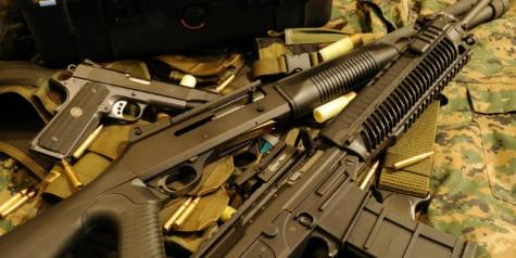 Constitution Check: Should gun control laws have to pass the toughest constitutional test?