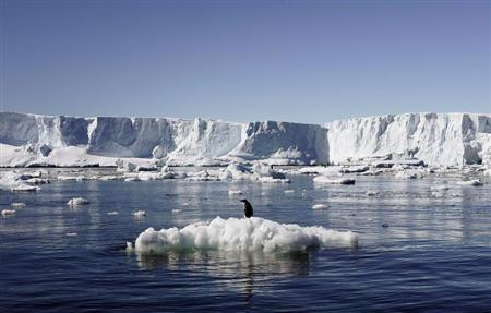An Adelie penguin stands atop a block of melting ice near the French station at Dumont d'Urville in East Antarctica