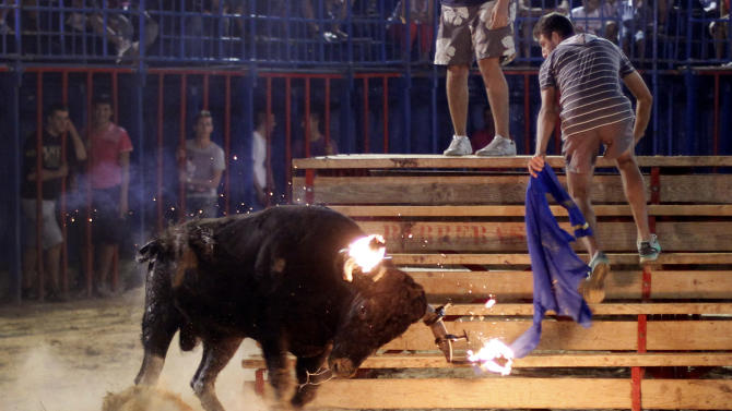 CORRECTS TIME SCALE TO READ:  WHO HAS KILLED TWO PEOPLE IN THE ARENA AND INJURED FIVE OTHERS OVER THE YEARS - In this Sept. 9, 2011 photo, a reveler runs away from a bull with flaming horns during a festivity in Sueca,near Valencia, Spain.  The fiesta is a prelude to en event featuring a hulking black and white bull whose name is 'Raton' (Mouse), a  1,100-pound (500-kilogram) beast, who has killed two people in the arena and injured five others over the years at pueblo (village) parties. Mouse is released in a ring and amateur daredevils provoke him so he'll chase them around to the cheers of thousands. (AP Photo/Alberto Saiz)