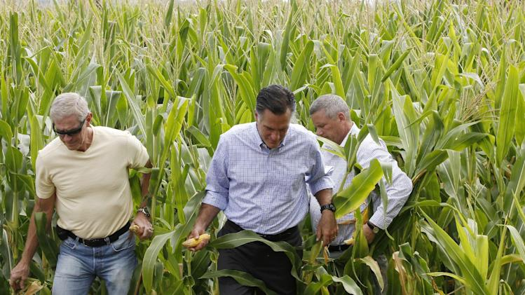 Republican presidential candidate, former Massachusetts Gov. Mitt Romney talks with Iowa Agriculture Secretary Bill Northey, right, and farm owner Lemar Koethe in a corn field in Des Moines, Iowa, Wednesday, Aug. 8, 2012. (AP Photo/Charles Dharapak)