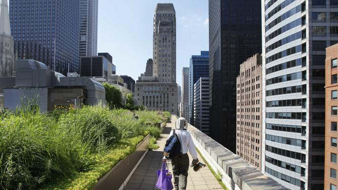 In this photo taken Tuesday, July 12, 2011, beekeeper Michael Thompson walks near the edge of City Hall in Chicago above La Salle Street after checking on over 100,000 bees at a beehive. Beekeeping is thriving in cities across the nation, driven by young hobbyists and green entrepreneurs. Honey from city hives makes its way onto swanky restaurant kitchens and behind the bar where it's mixed into cocktails or stars as an ingredient in mead. The city of Chicago's hives, nine in all, on rooftops and other government property are just part of the boom. (AP Photo/Charles Rex Arbogast)