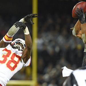 Oakland Raiders wide receiver Andre Holmes makes spectacular catch