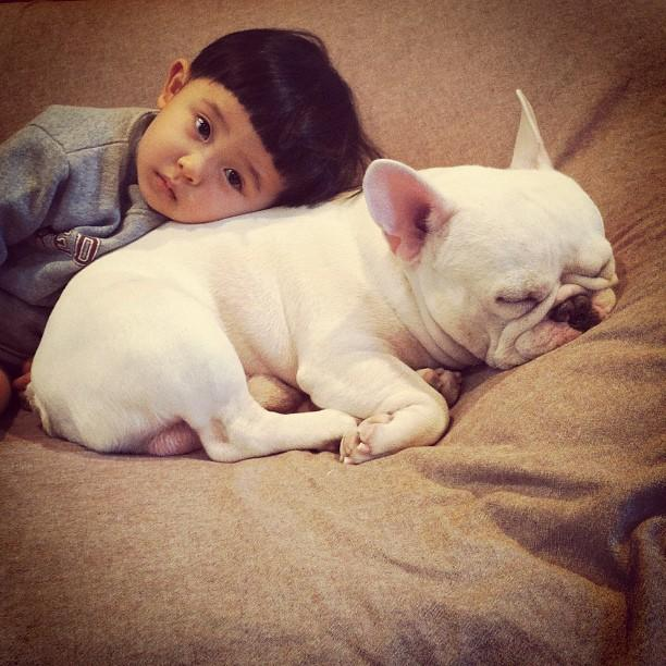 A boy and his bulldog