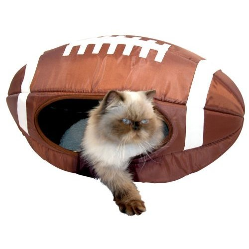 When your team is winning, this is a cat football bed.