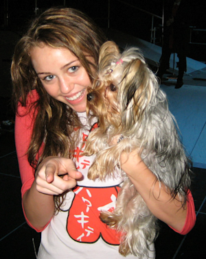 Celebrities Who Got Their Pet from the Shelter!