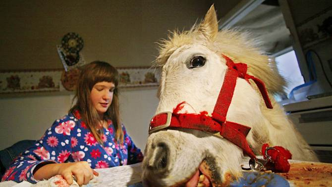 Carissa Boulden watches her pet horse Princess eat at the family's dining table in Sydney.