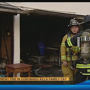 Apartment fire results in death of family pet 5:00 p.m.