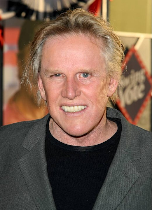Gary Busey checks into season 2 of Celebrity Rehab with Dr. Drew .