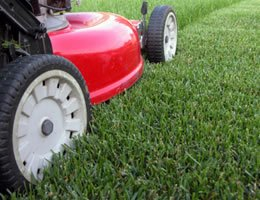 8-ways-to-save-money-on-costly-lawn-care-1-intro-lg