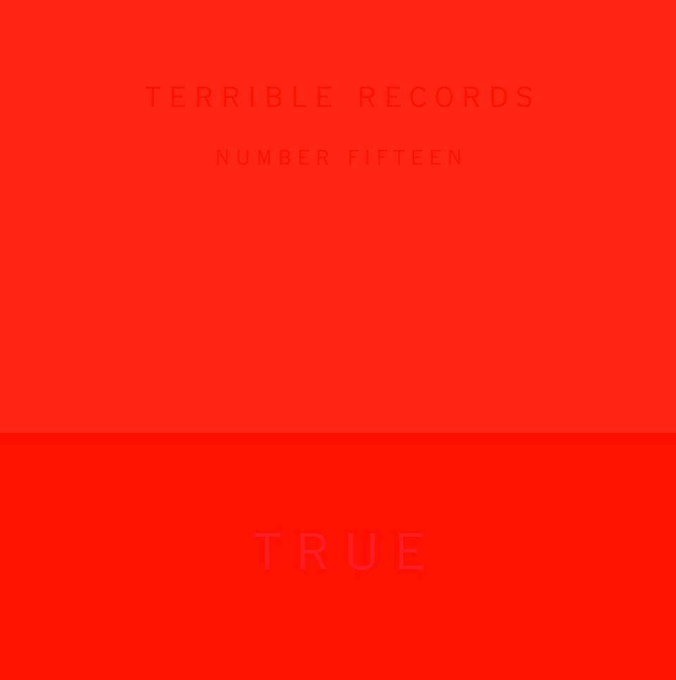 "This CD cover image provided by Terrible Records shows the latest release by Solange, ""True EP."" The release is out Tuesday, Nov. 27, 2012. (AP Photo/Terrible Records)"