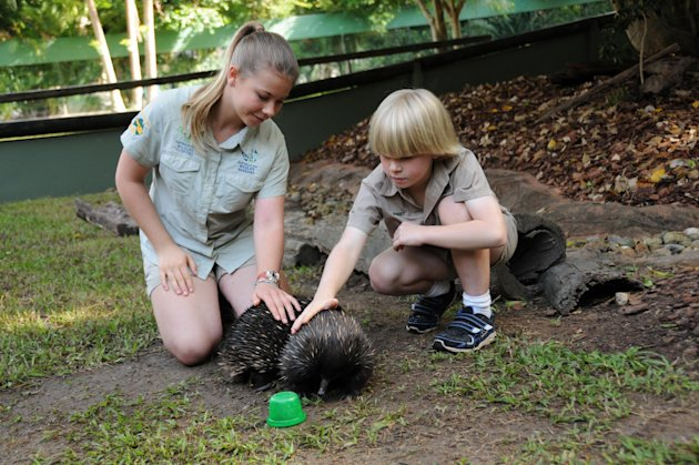 "This undated image provided by ""Growing Up Wild"", shows, Bindi Irwin, 13, and Robert Irwin, 8, children of famed animal adventurer Steve Irwin, pet an echidna at the Australian Zoo outside Brisbane, Aus. during a taping of ""Growing Up Wild,"" a new series from Fremantle Media that can be seen on The Pet Collective, a new YouTube Channel. (AP Photo/Growing Up Wild)"