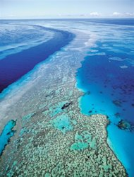 FILE - In this Sept. 2001 file photo provided by provided by Queensland Tourism, an aerial view shows the Great Barrier Reef off Australia's Queensland state. Starvation, poverty, flooding, heat waves, droughts, war and disease already lead to human tragedies. They're likely to worsen as the world warms from man-made climate change, a leaked draft of an international scientific report forecasts. Australia and New Zealand get the unique risk of losing their coral reef ecosystems, and small island nations have to be worried about being inundated by rising seas. (AP Photo/Queensland Tourism, File) EDITORIAL USE ONLY