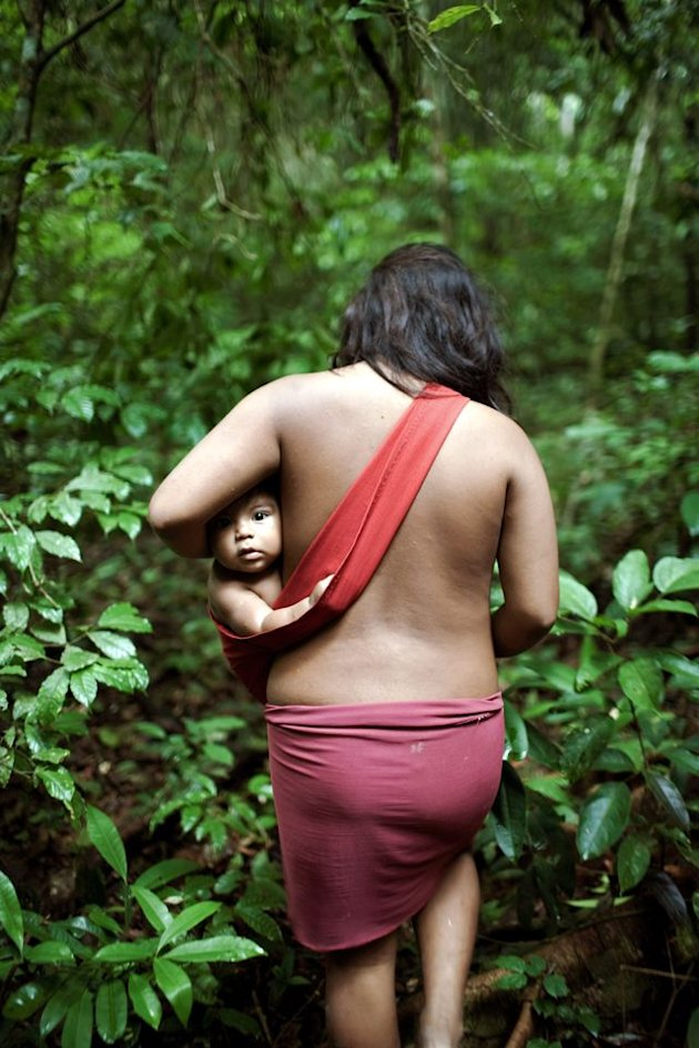 awa dp 84 120425 jpeg 164651 Suku Awá, Suku Terasing di Hutan Amazon