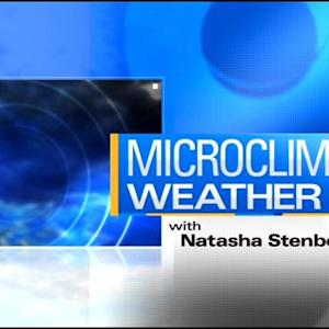 MicroClimate Forecast: Wednesday, October 22, 2014 (Morning)