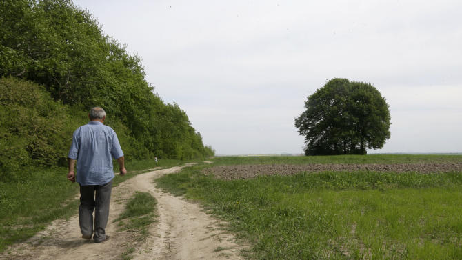 In this picture taken May 10, 2013, Ivan Hrushka, 69, approaches the site of a peasant house - under trees in the distance on the right - where 21 people, including nine children were burned alive  on Dec.3, 1943, in his home village of Pidhaitsi close to Ukraine's western city of Lutsk. Evidence uncovered by AP indicates that Ukrainian Self Defense Legion commander Michael Karkoc's unit was in the area at the time of the massacre of civilians . There is no indication any other units were in the area at the time.  (AP Photo/Efrem Lukatsky)