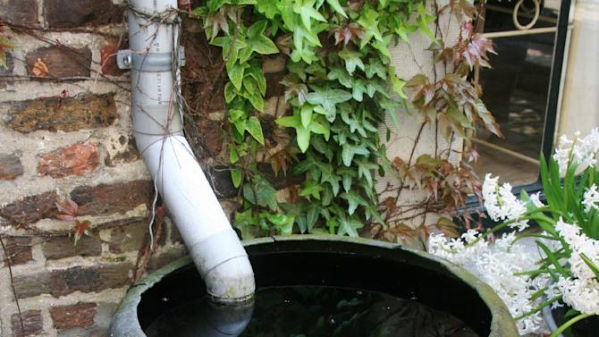 In this April 19, 2009 photo, rainscaping features can be expensive and complicated or simple and cheap, like this rain barrel capturing water from a downspout on a rural home in northern Belgium. The gardener simply dips a spray can into the surplus when she wants to water her plants. (AP Photo/Dean Fosdick)