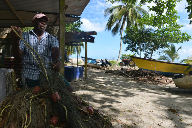 In this May 2, 2013 photo, fisherman Ervan James untangles a net that he says can inadvertently ensnare about six leatherback turtles in a single night at the peak of six-month nesting season, on the 