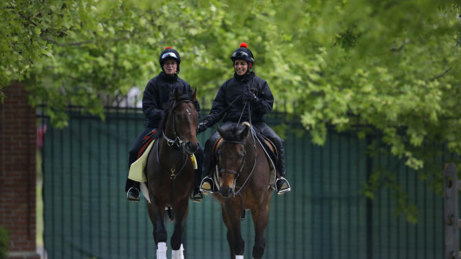 Kentucky Derby winner Orb, left, with exercise rider Jennifer Patterson aboard, is escorted to a stable by Anna Martinovsky at Pimlico Race Course in Baltimore, Wednesday, May 15, 2013. The Preakness Stakes horse race is scheduled to take place May 18. (AP Photo/Patrick Semansky)