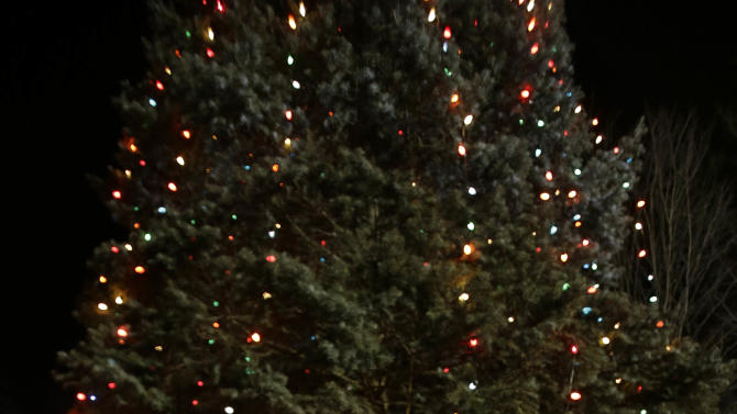 A woman with flowers walks past a Christmas tree which has become a memorial to the Newtown shooting victims in Newtown, Conn., Thursday, Dec. 20, 2012. (AP Photo/Seth Wenig)