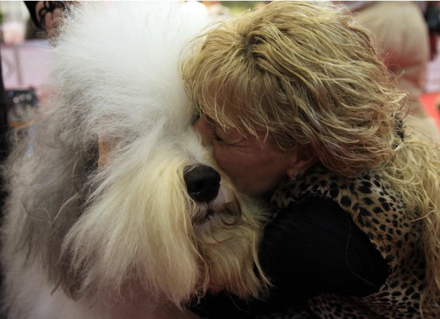 A woman kisses Jimmy, an Old English Sheepdog, after he won the Best Dog title in the World Dog Show in Budapest