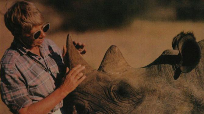 In this undated photo supplied by Ol Pejeta Conservancy, shows Anna Merza, interacts with a rhino in Kenya. Merza, a conservationist who sought to protest the rhino from systematic poaching that has severely depleted its numbers in Africa, died in South Africa April 4, 2013. (AP Photo/Ol Pejeta Conservancy)