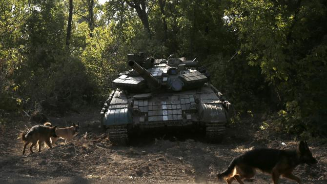 Dogs are pictured near a Ukrainian tank at a position near Donetsk