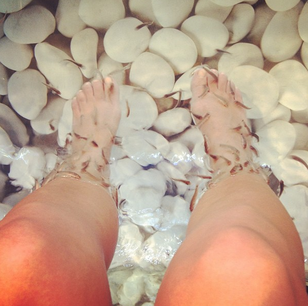 kourtney kardashian fish water feet greece vacation