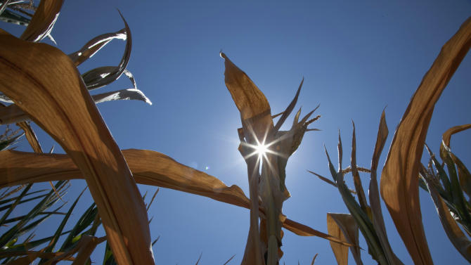 Drought eases in farm belt but not over yet