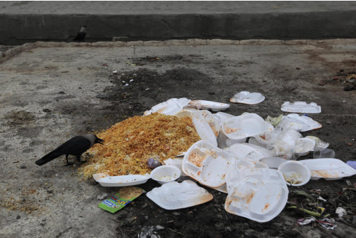 In this July 7, 2011, photograph, a crow feeds on food left over after a marriage ceremony in Srinagar, India. As the ranks of the wealthy surge with India's economic growth, many families are staging extravagant displays of food, often at their children's weddings, to show off their newfound affluence. But the extravagant waste that follows has horrified many in a nation where tens of millions of young children are malnourished. (AP Photo/Dar Yasin)