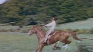 National Velvet (Trailer 1)