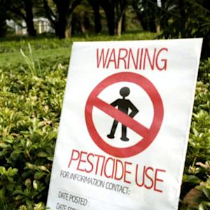 Pesticides help lawns but hurt humans, doctors say