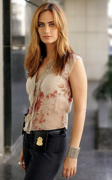Diane Farr stars as Megan Reeves in Numb3rs on CBS.