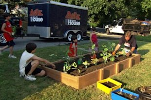 Build a raised vegetable garden