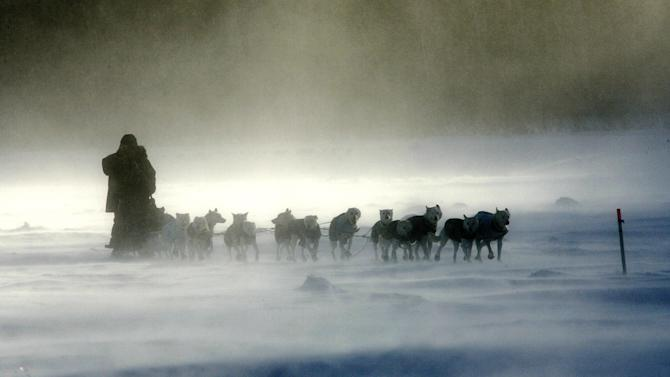 FILE - Jim Lanier, of Chugiak, Alaska, drives his team through the blowing snow on the Yukon River outside Ruby, Alaska, on Saturday, March 11, 2006, during the Iditarod Trail Sled Dog Race. (AP Photo/Al Grillo, File)