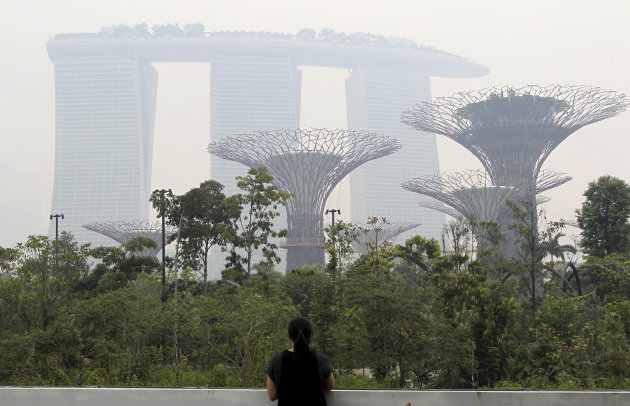 Singapore fumes as air pollution hits 16-year high