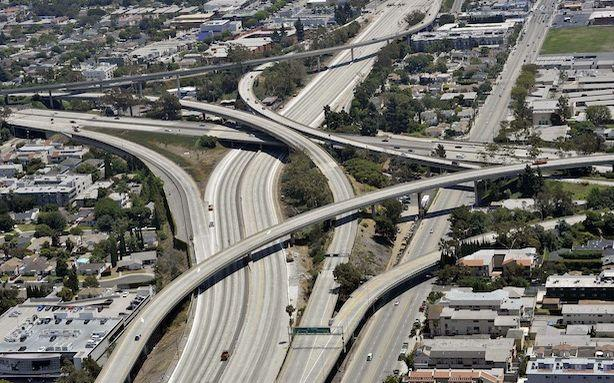 Carmageddon Cleared L.A.'s Skies; A Forensic Use for Maggots