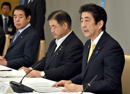 Japan's Prime Minister Abe speaks during a meeting of Cabinet ministers on a new National Stadium construction plan for the 2020 Tokyo Olympics at Abe's official residence in Tokyo