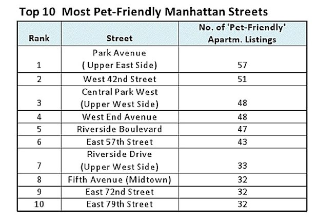 pet friendly streets