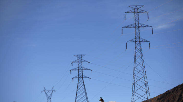 A llama walks past an electric line in El Alto, Bolivia, Tuesday, May 1, 2012. Bolivia's President Evo Morales announced Tuesday that his government is completing the nationalization of the country's electricity industry by seizing control of its main power grid from the Spanish-owned company Red Electrica. (AP Photo/Juan Karita)